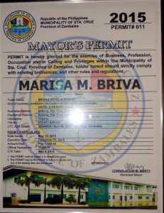 mayors permit 2015